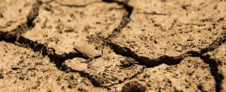 Szacowanie strat suszowych poprzez specjalną aplikację.