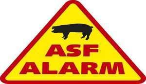 Afrykański Pomór Świń (ASF)  Zagrożenie Epizootyczne