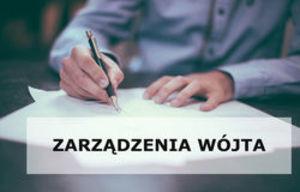 Z A R Z Ą D Z E N I E  NR 1/2020 Wójta Gminy Borzechów z dnia 2 stycznia 2020 r.