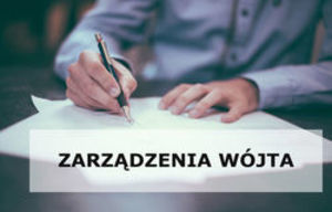 Z A R Z Ą D Z E N I E  NR 6/2020 Wójta Gminy Borzechów