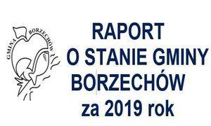 RAPORT O STANIE GMINY BORZECHÓW za 2019 rok