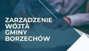 ZARZĄDZENIE  NR  38/2020 Wójta Gminy Borzechów  z dnia 4 sierpnia 2020 r.