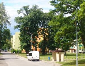 Budowa oświetlenia drogowego w ul. Ścibiora
