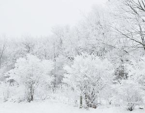 Ostrzeżenie o intensywnych opadach śniegu z dnia 3.01.2017