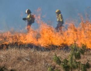 """Kampania """"STOP pożarom traw"""""""