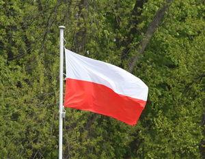 Obchody 229. rocznica uchwalenia Konstytucji 3 maja w Dęblinie