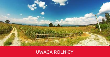 Komunikat dotyczący zgłaszania szkód spowodowanych suszą - IUNG Puławy, Raport Nr 9