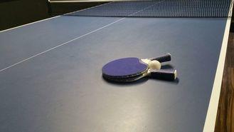Mistrzostwa pingpongistów