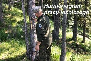 Starostwo Powiatowe w Lublinie – Wydział Ochrony Środowiska, Rolnictwa i Leśnictwa, informuje, że w dniu 1 lipca 2021 r. (w godz. 10.00 – 11.00)