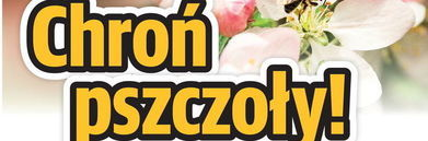 Baner z plakatu - napisa chroń pszczoły!