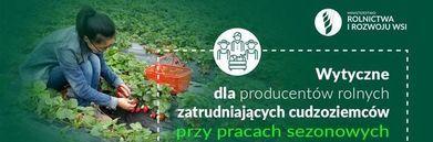 Grafika osoba zbierająca truskawki, logo Ministerstwa rolnictwa i rozwoju wsi, ikona w kółku rolnicy i napis: Wytyczne dla producentów rolnych zatrudniających cudzoziemców przy pracach sezonowych