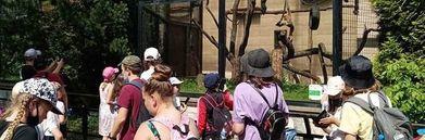 Dzieci podczas wycieczki w zoo