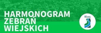 Grafika napis na zielonym tle - Harmonogram zebrań wiejskich