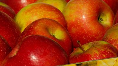 Eksport jabłek do Chin