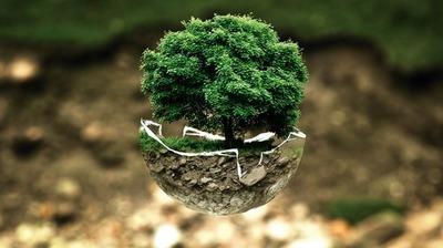 Wydawanie decyzji o środowiskowych uwarunkowaniach zgody na realizację przedsięwzięcia