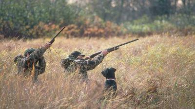 Informacja o polowaniu zbiorowym - Koło Łowieckie nr 5