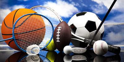 Informacja o przyznanych stypendiach w dziedzinie sportu