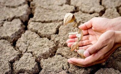 Niekorzystne zjawiska atmosferyczne 2020