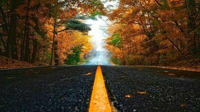 Wydawanie zezwoleń na lokalizację w pasie drogowym urządzeń infrastruktury technicznej niezwiązanych z potrzebami zarządzania drogami lub potrzebami ruchu drogowego