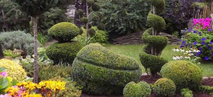 Konkurs na najpiękniejszy ogród w gminie Kamionka