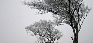 Zmiana ostrzeżenia meteorologicznego Nr 8 wydanego o godz. 12:28 dnia 09.02.2020