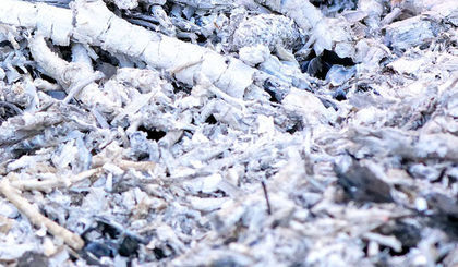 Selektywna zbiórka odpadów komunalnych na terenie miasta Krasnystaw