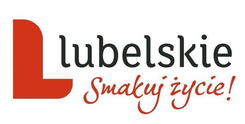 Wybory do Rady Działalności Pożytku Publicznego Województwa Lubelskiego - wybory