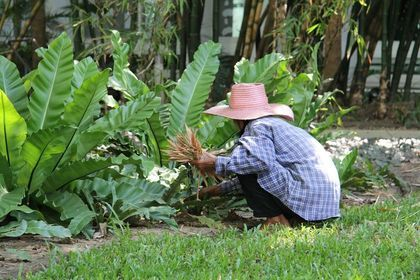 Wytyczne MRiRW dla rolników zatrudniających cudzoziemców