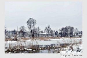 Zdjęcie   Aleksandra W.Zaroda - Stawy w Dominowie
