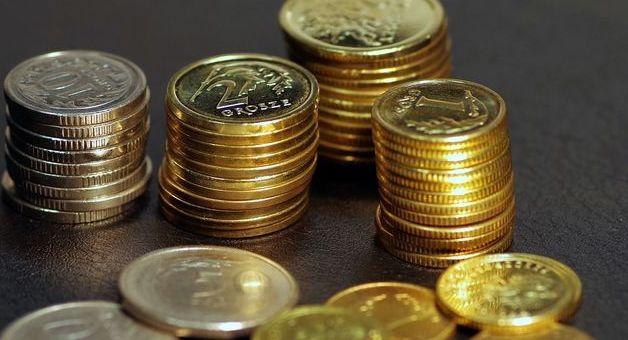 Wykadrowana grafika przedstawiająca polskie monety