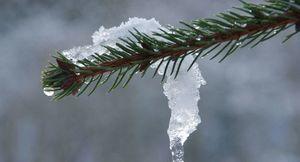 Roztapiający się śnieg