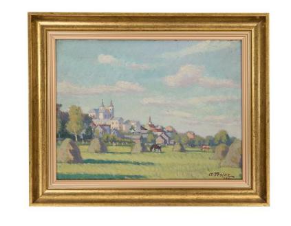 Panorama Krasnegostawu od strony łąk