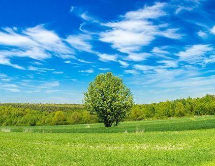 Kraszczady - piękno przyrody wśród wąwozów ukryte