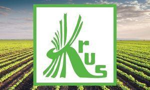 Logo KRUS na tle pola