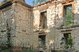 Zdjęcie przedstawia Ruiny Zamku w Bychawie