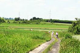 Szlak rowerowy Gmina Borzechów