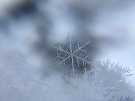 zbliżenie na płatek śniegu