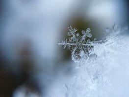 na zdjęciu znajduje się zbliżenie płatka śniegu