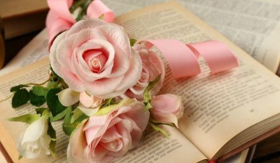 Różowe róże na książce