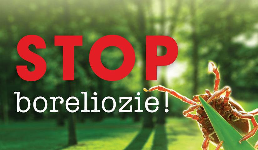 Grafika kleszcz na liściu i napis STOP Boreliozie