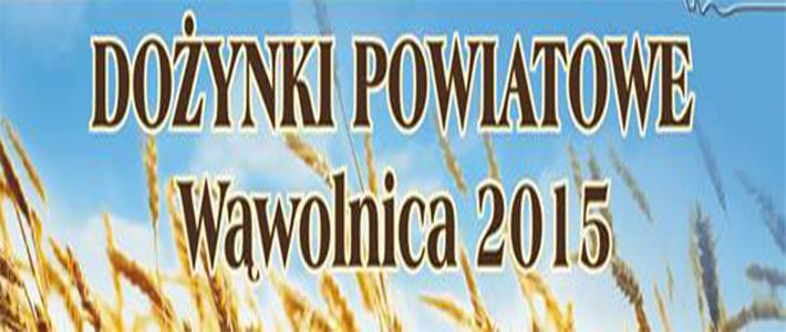 Dożynki Powiatowe Wąwolnica 2015 - przypomnienie o upływie terminu zgłoszeń do konkursów
