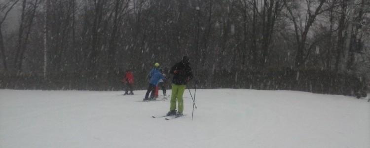 Sporty zimowe w Powiecie Puławskim