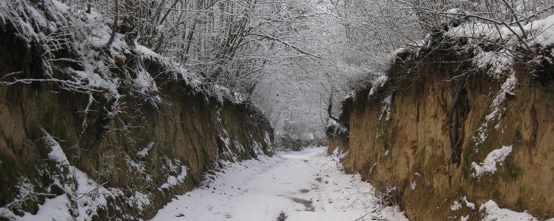Zima ...