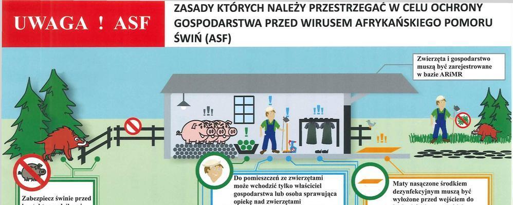 Informacja Ministra Rolnictwa i Głównego Lekarza Weterynarii dot. ASF