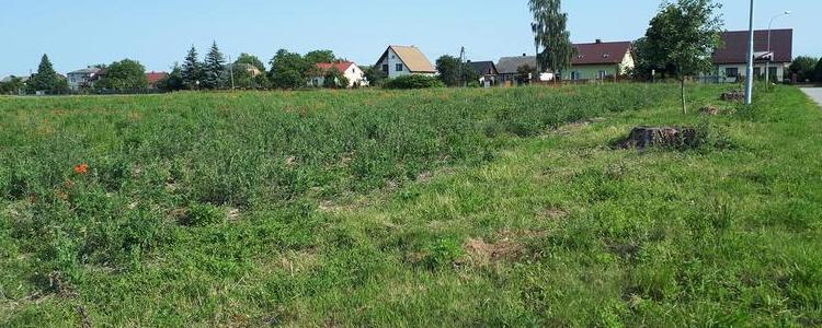 Trzecie przetargi ustne nieograniczone na sprzedaż prawa własności niezabudowanych nieruchomości położonych w Żyrzynie