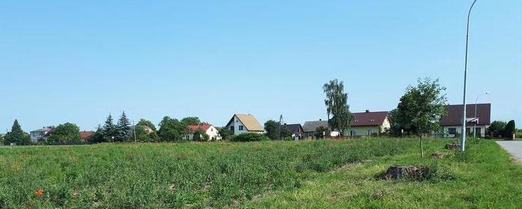 Działka zielona, trawa, niebo, drzewa i domy na horyzoncie