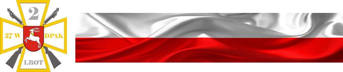 Logo WOT, flaga Polski