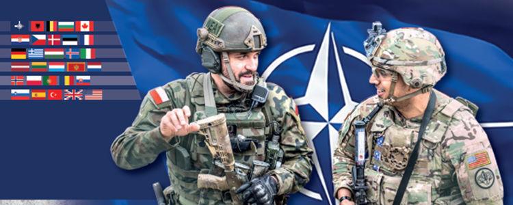 żołnierze, flagi