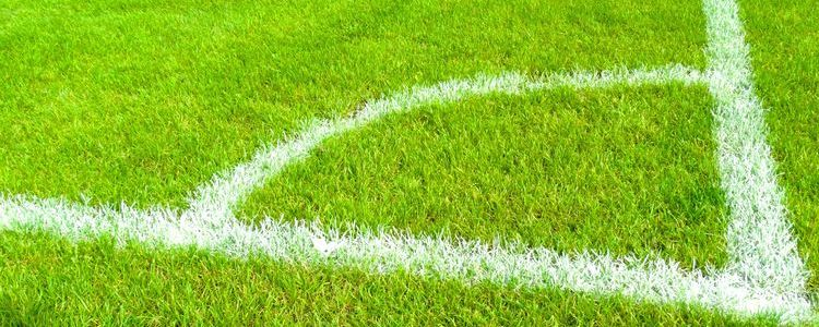 Stanowisko Zarządu Powiatu w sprawie prośby Wójta Gminy Puławy o udzielenie przez powiat puławski pomocy finansowej dla gminy Puławy na budowę stadionu sportowego w Gołębiu