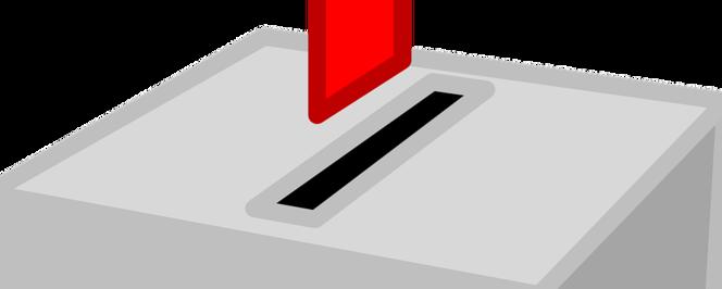 Wybory do Powiatowej Rady Działalności Pożytku Publicznego w Puławach